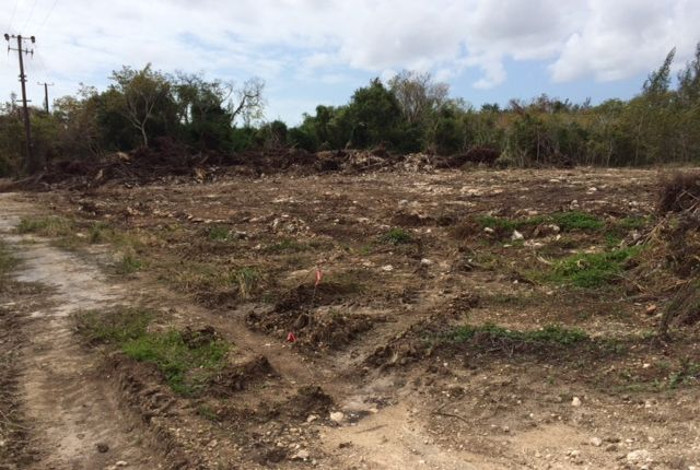 Land for sale in Perpall Tract, Nassau/New Providence, The Bahamas