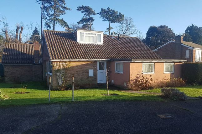 Thumbnail Detached bungalow to rent in Walton Close, St. Leonards-On-Sea