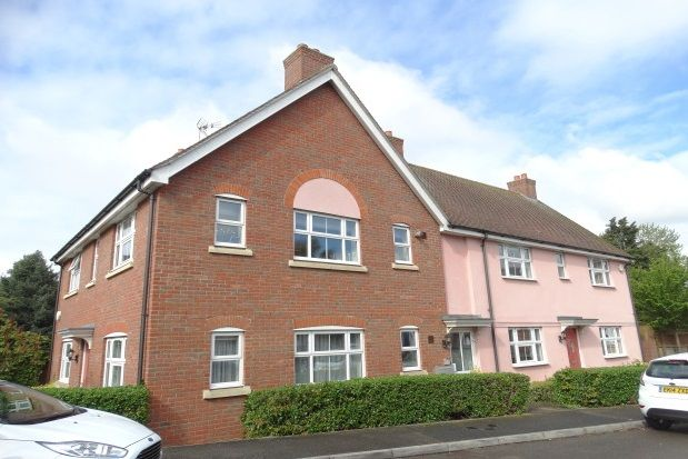 Thumbnail Flat to rent in Bellfield Close, Witham