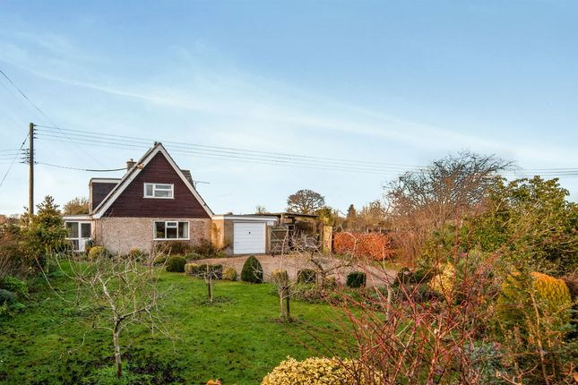 Thumbnail Bungalow for sale in Common Road, Hopton, Diss