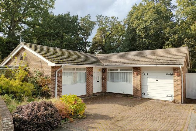 3 bed detached bungalow for sale in Pitsham Wood, Midhurst GU29