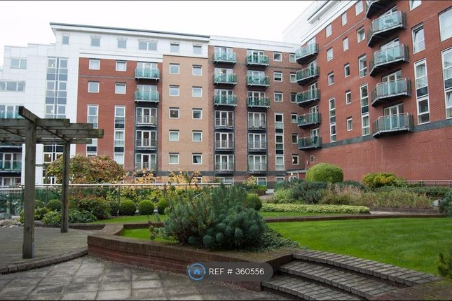 Thumbnail Flat to rent in Westfield Terrace, Sheffield
