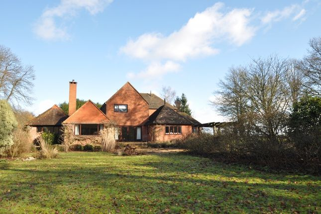 Thumbnail Detached house to rent in Highfield Lane, Puttenham, Guildford