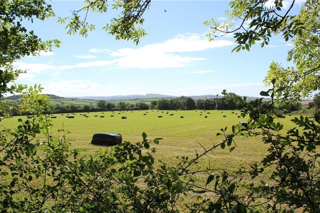 Thumbnail Land for sale in Shipton Gorge, Bridport, Dorset