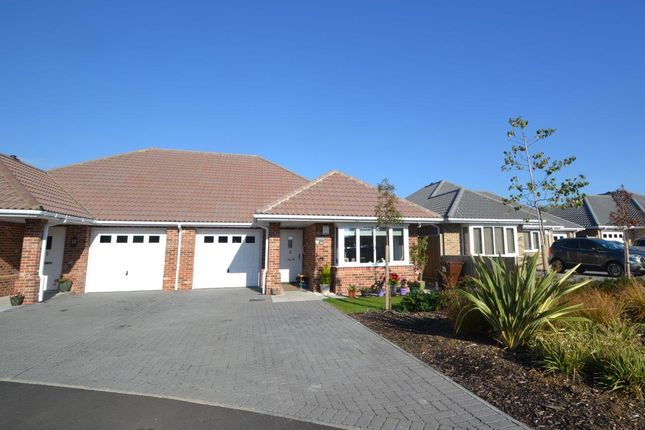 Thumbnail Bungalow for sale in Connaught Close, Connaught Gardens East, Clacton-On-Sea
