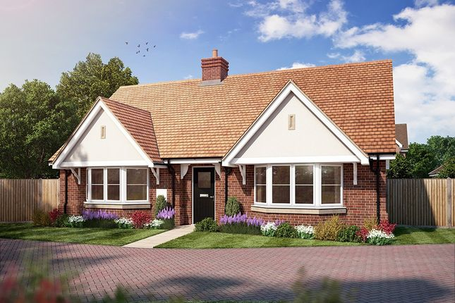Thumbnail Detached bungalow for sale in Amlets Place, Amlets Lane, Cranleigh