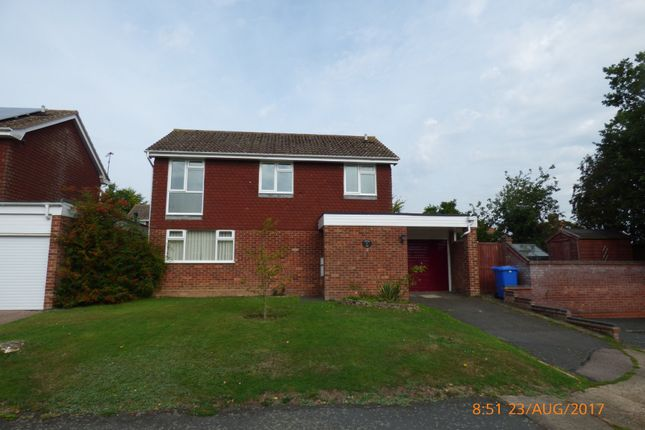 Thumbnail Detached house to rent in Meadow Gardens, Beccles