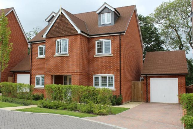 Thumbnail Detached house for sale in The Croft, Ash Green