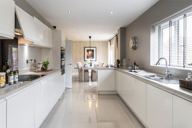 """5 bedroom detached house for sale in """"The Buttermere Alternative"""" at Roundhill Road, Hurworth, Darlington"""