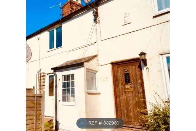 Thumbnail Terraced house to rent in East Road, Bridport