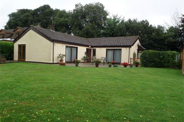 Thumbnail Detached bungalow to rent in Portskewett, Caldicot, Monmouthshire