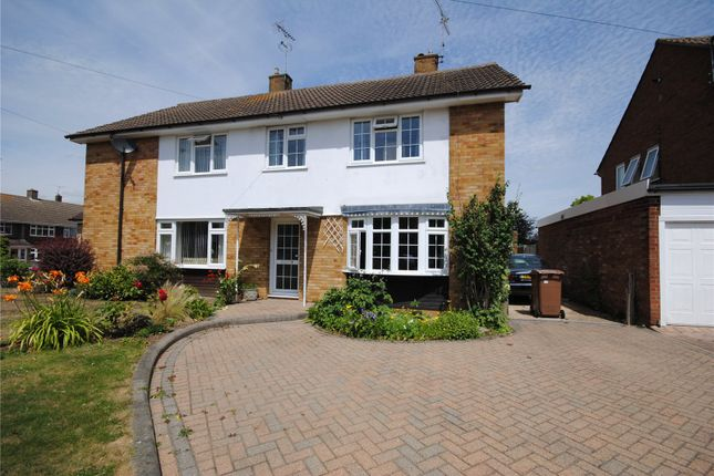 Thumbnail Semi-detached house for sale in Dane Road, Chelmsford, Essex