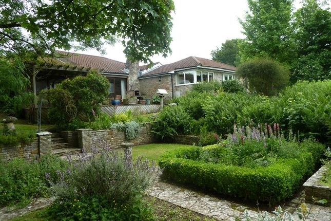 Thumbnail Cottage for sale in The Drive, Shipham