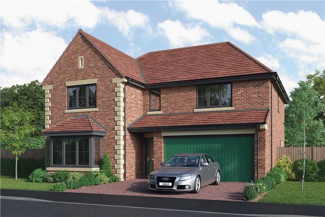 """Thumbnail Detached house for sale in """"The Thetford"""" at Armstrong Street, Callerton, Newcastle Upon Tyne"""