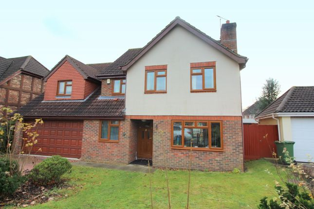 Thumbnail Detached house to rent in Rainsborough Rise, Thorpe St. Andrew, Norwich
