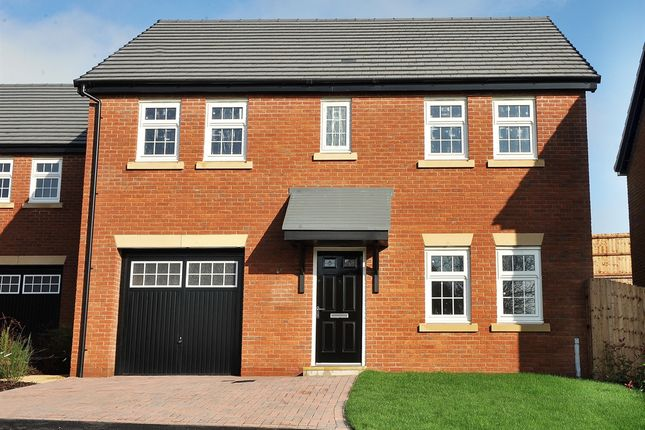 "Thumbnail Detached house for sale in ""Lewis "" at D'urton Lane, Broughton, Preston"