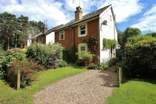 Thumbnail Semi-detached house for sale in Anthonys, Horsell, Surrey