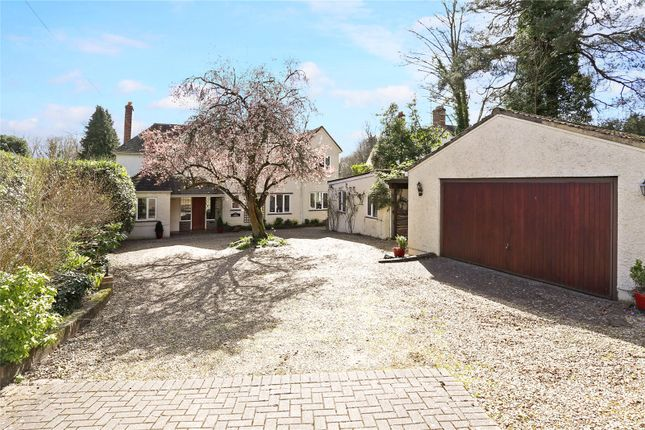 Thumbnail Detached house for sale in Echo Barn Lane, Wrecclesham, Farnham, Surrey