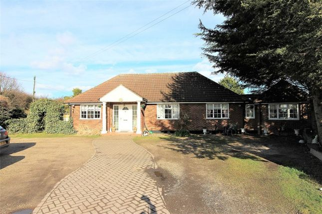 Detached bungalow for sale in Old House Lane, Roydon, Harlow