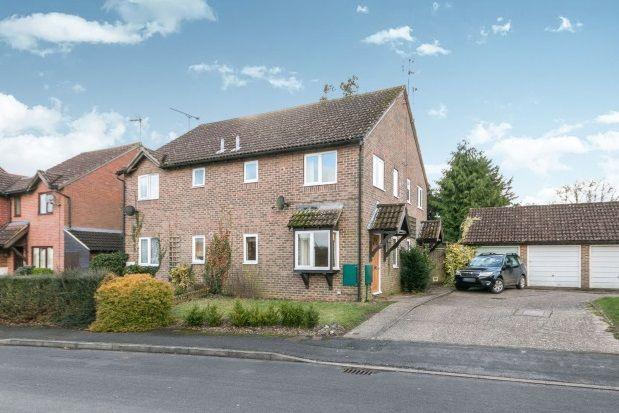 Thumbnail Property to rent in Vindomis Close, Holybourne, Alton