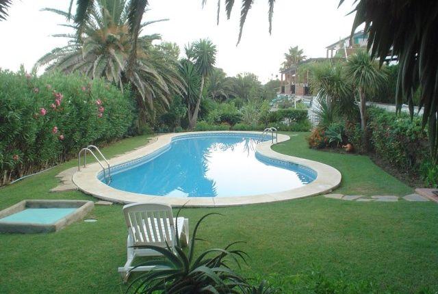 Pool Area of Spain, Málaga, Estepona, Buenas Noches