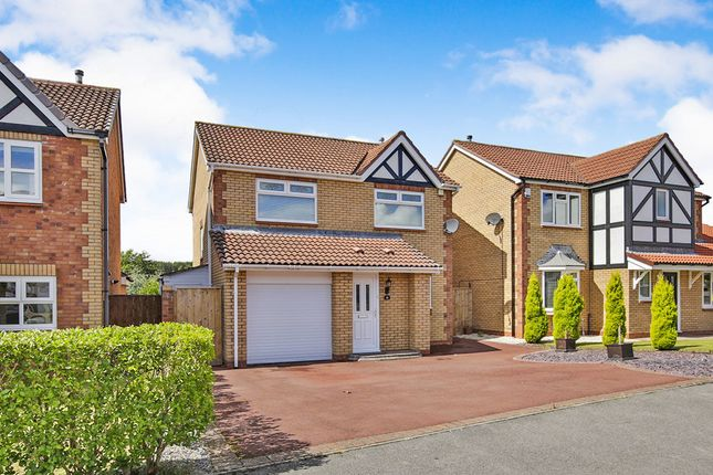 Thumbnail Detached house for sale in Falstone Drive, Chester Le Street