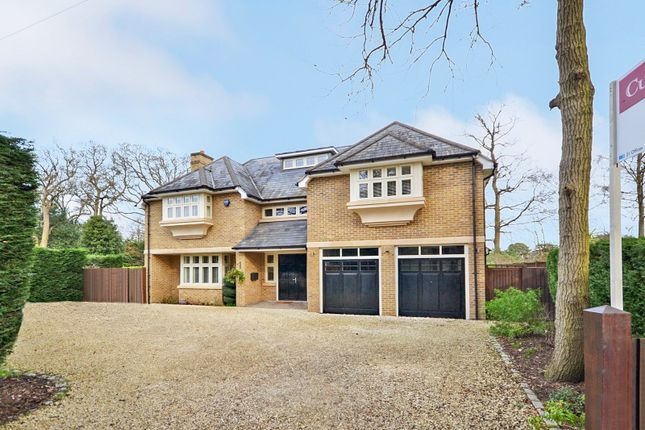 Thumbnail Detached house for sale in Blackdown Avenue, Pyrford, Woking