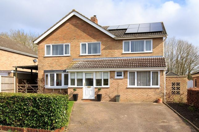Thumbnail Detached house for sale in Orchard Way, Tasburgh, Norwich