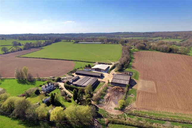 Thumbnail Equestrian property for sale in Ashurst Wood, East Grinstead, West Sussex