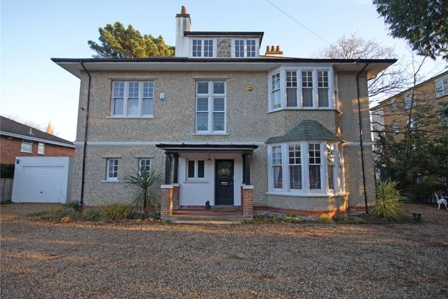 Thumbnail Detached house for sale in St. Winifreds Road, Bournemouth, Dorset