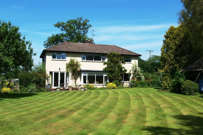 Thumbnail Detached house for sale in Whimple, Exeter