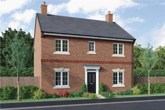 """Thumbnail Detached house for sale in """"Walton"""" at Radbourne, Ashbourne"""