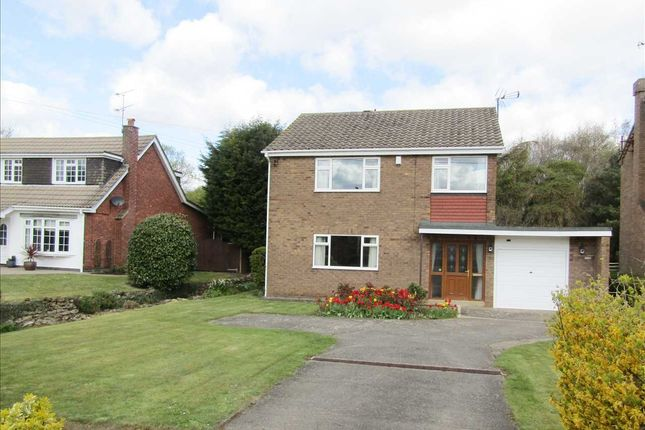Thumbnail Detached house for sale in Burton Road, Thealby, Scunthorpe