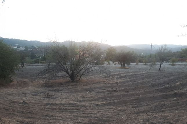 Thumbnail Land for sale in Asgata, Cyprus