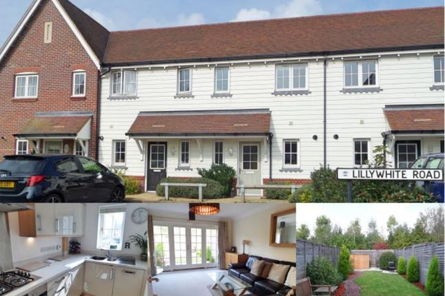 Thumbnail Terraced house to rent in Lillywhite Road, Westhampnett