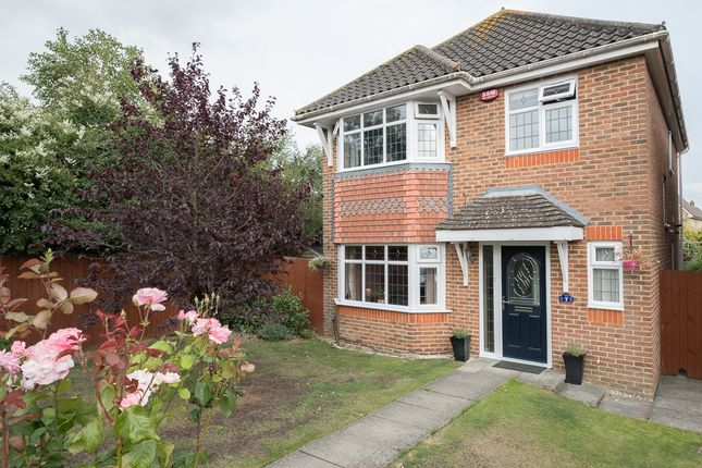 Thumbnail Detached house for sale in Romulus Gardens Knights Park, Ashford, Kent United Kingdom