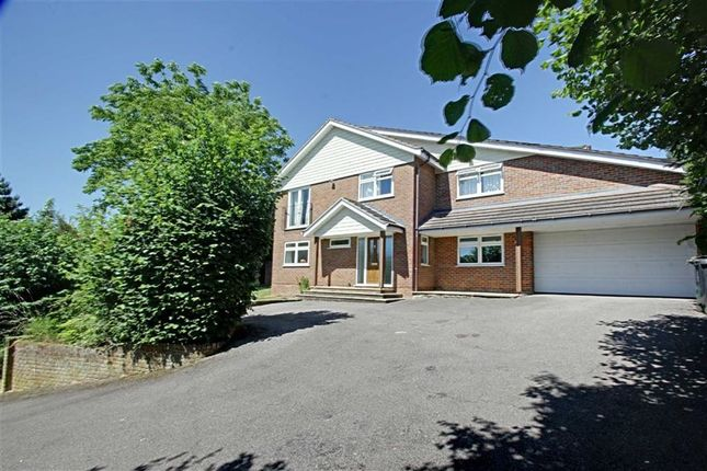 Thumbnail Detached house to rent in Highclere Drive, Hemel Hempstead
