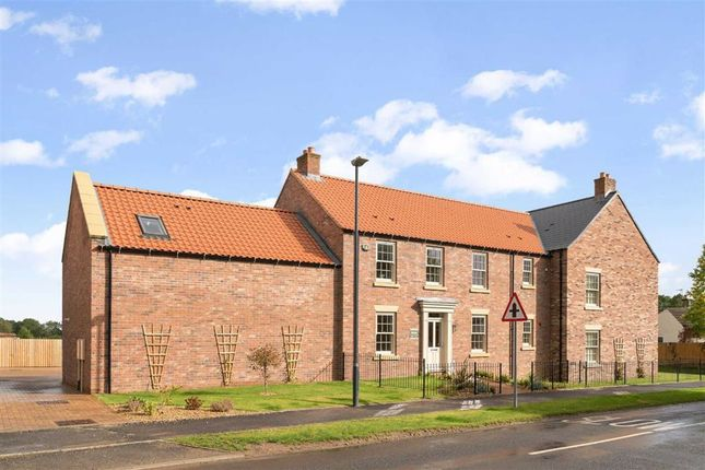 Thumbnail Link-detached house for sale in Knaresborough Road, Bishop Monkton, North Yorkshire