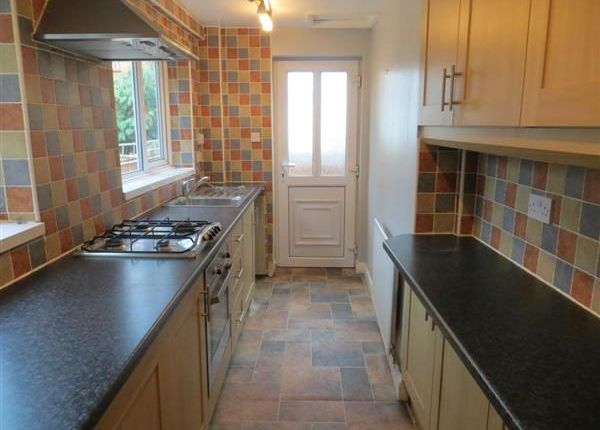 Thumbnail Terraced house to rent in Lothair Road, Leicester