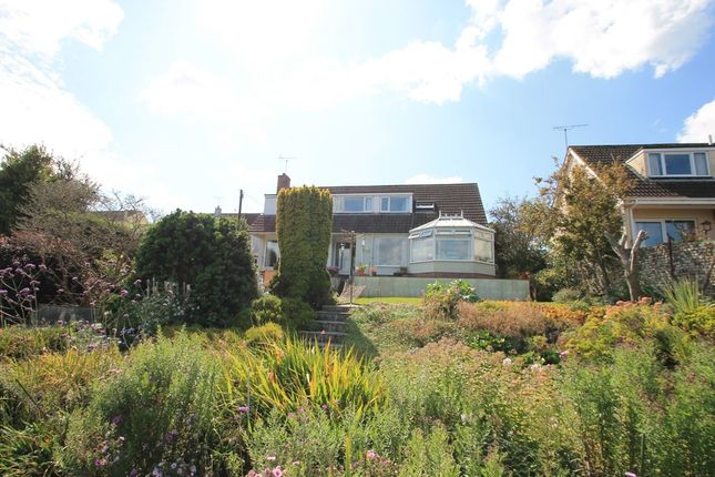 Thumbnail Detached House For Sale In Westbourne Terrace Saltash