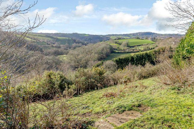 Views of Trusham, Newton Abbot, Devon TQ13