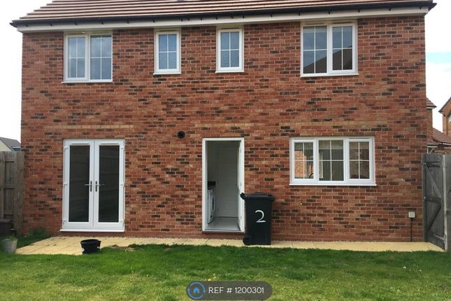 Thumbnail Detached house to rent in Howkins Road, Northampton