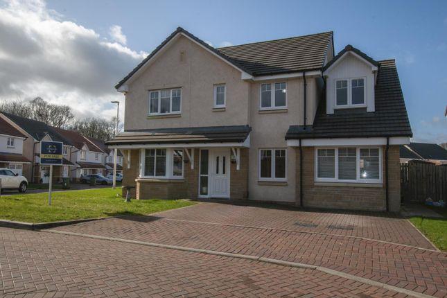 Thumbnail Detached house for sale in 26 The Cormorant, Alloa, Clackmannanshire 1Rl, UK