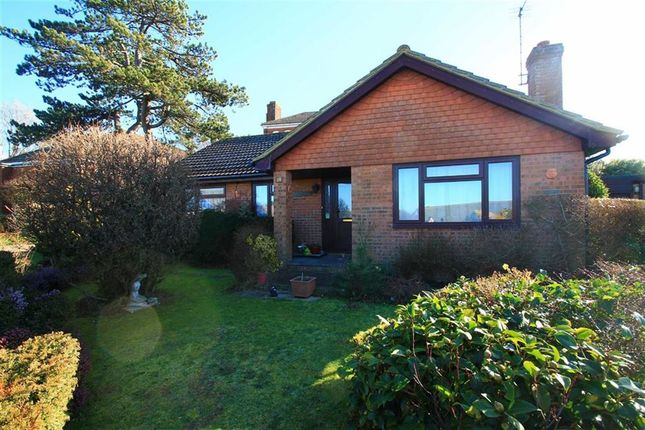Thumbnail Detached bungalow for sale in St Dominic Close, St Leonards-On-Sea, East Sussex