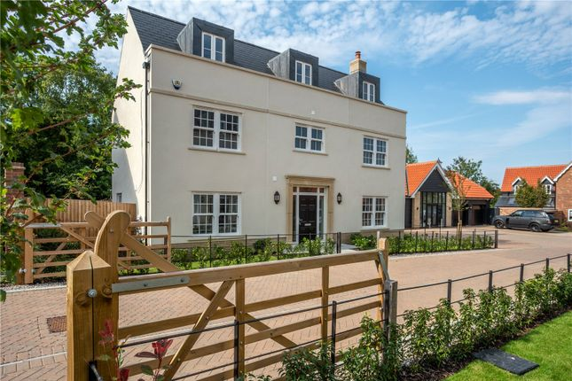 Thumbnail Detached house for sale in Coxtie Green Road, Pilgrims Hatch, Brentwood, Essex