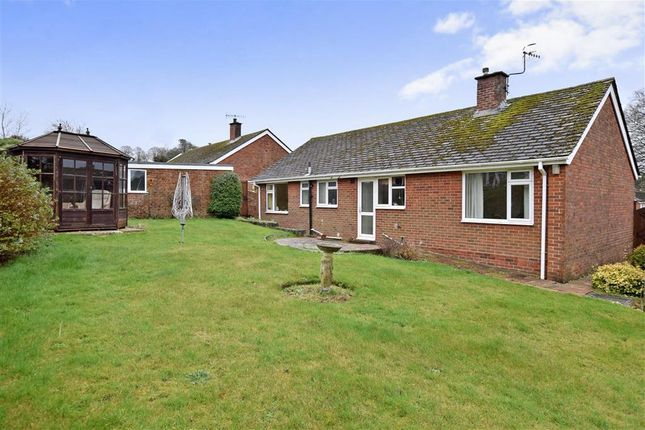 Thumbnail Bungalow for sale in Beech Close, Findon, Worthing, West Sussex