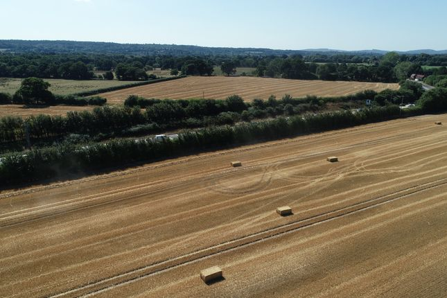 Thumbnail Land for sale in Greatham, Petersfield