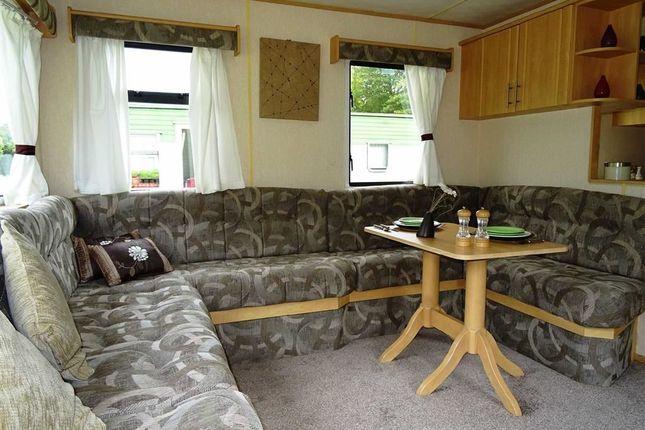 Lounge / Dining Area: