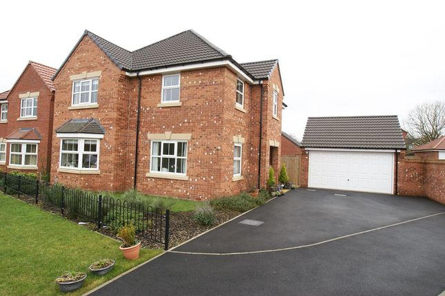 Thumbnail Detached house for sale in Periwinkle Road, Wingerworth, Derbyshire