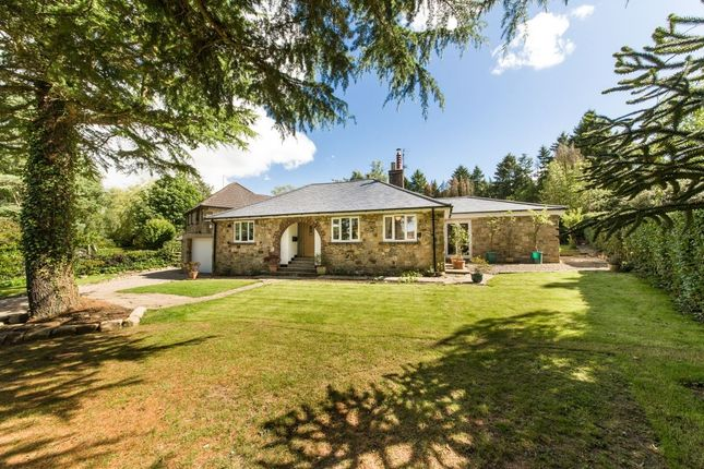 Thumbnail Bungalow for sale in High Mill Road, Hamsterley Mill, Rowlands Gill